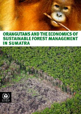 "2011: ""Orangutans and the Economics of Sustainable Forest Management in Sumatra"" published"