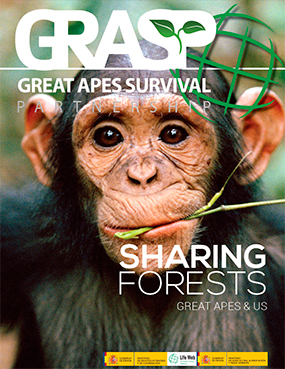 "2014: ""Sharing forests – Great Apes & Us"" published"