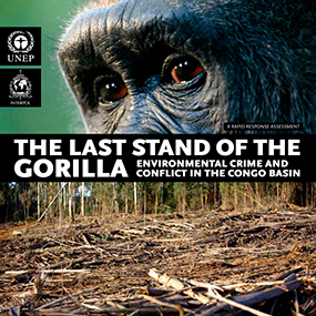"2010: ""The Last Stand of the Gorilla: Environmental Crime and Conflict in the Congo basin"" published"