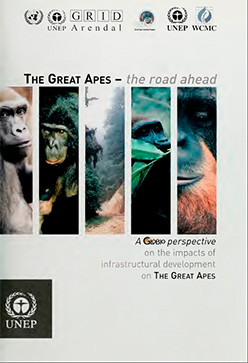 "2002: ""The Great Apes – The Road Ahead"" published"